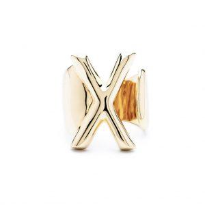 lettera x oro