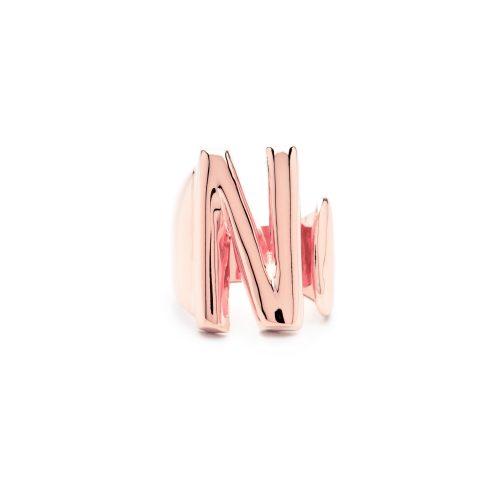 letter n rose